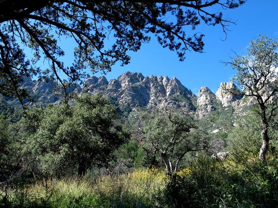 Aguirre Spring National Recreation Area: The Needles