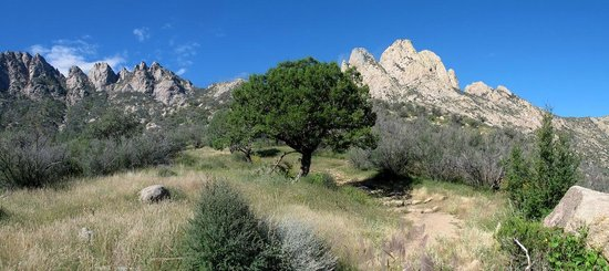 "Aguirre Spring National Recreation Area: ""Rabbit Ears"" Organ Mountains"