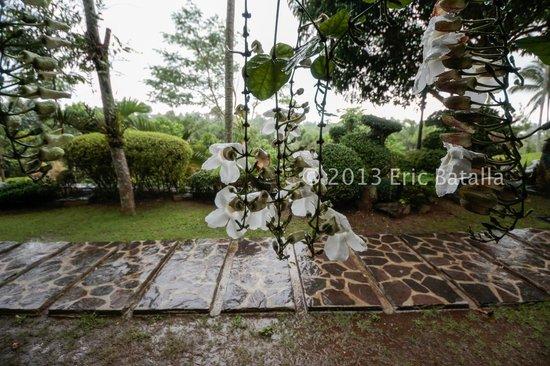 辛泰寇里托斯花園飯店照片