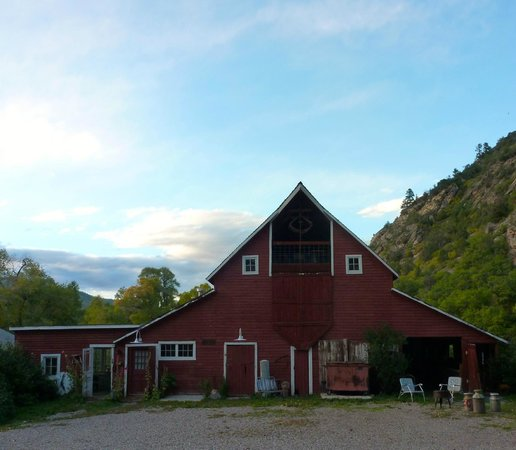 Four Mile Creek Bed and Breakfast : The barn, filled with treasures!
