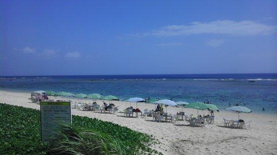 Yoshino Coast: 吉野海岸で夏休み♪