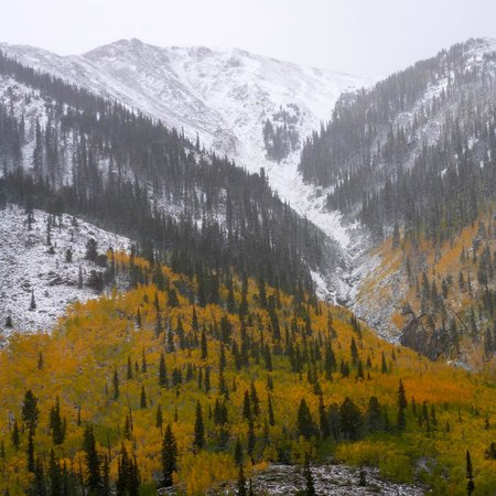 Mount Elbert Lodge: View from the lodge w. fresh snow & golden aspens