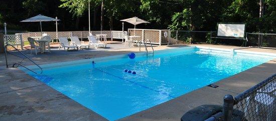Lakeshore Resort: Pool