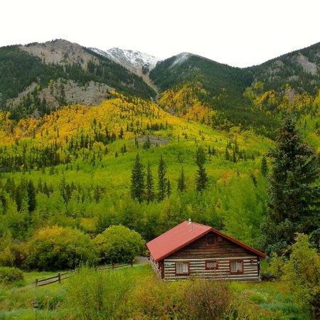 Mount Elbert Lodge: Beautiful aspens in the fall