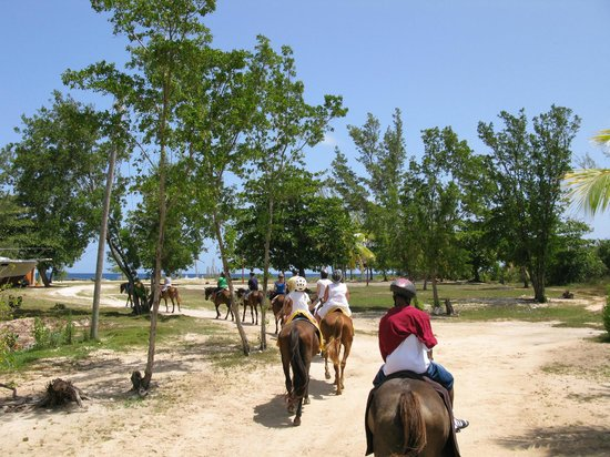 Braco Stables: Arriving at the beach stop