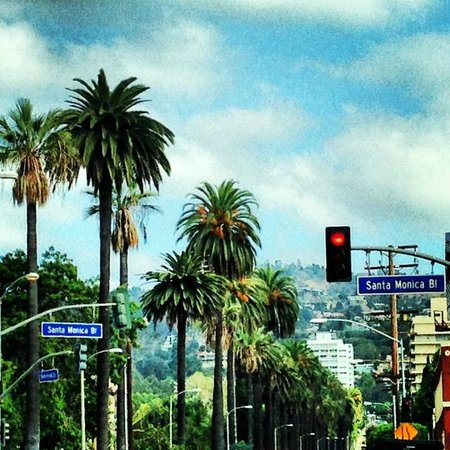 Glitterati Tours: The dividing line on Santa Monica Blvd between Beverly Hills and West Hollywood.