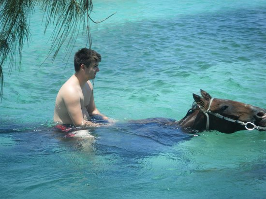 Braco Stables: Gliding through the aquamarine water on the back of a horse