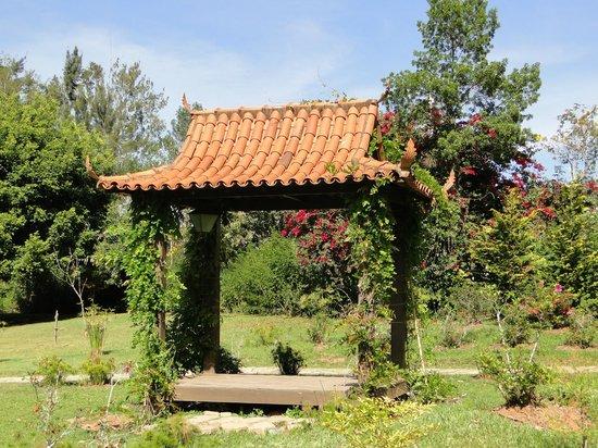 Parque das Aguas: jardim japones