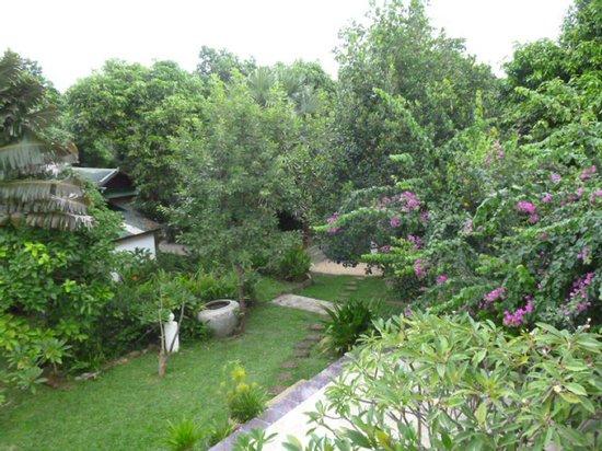 Malibu Estates Bungalows Resort: Jardin Hôtel