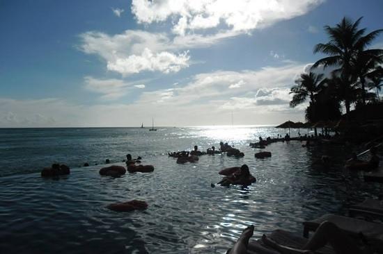 Sheraton Waikiki: Infinity pool in the afternoon