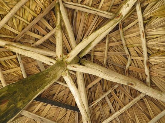Excellence Punta Cana: Palapa