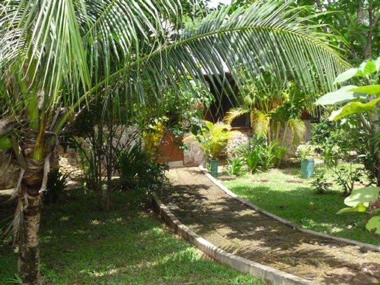 Malibu Estates Bungalows Resort: Bungalow sous la verdure