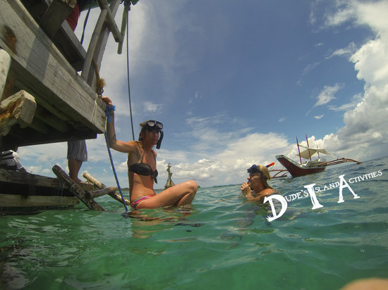 Dude's Island Activities: Snorkeling in a Fish Sanctuary