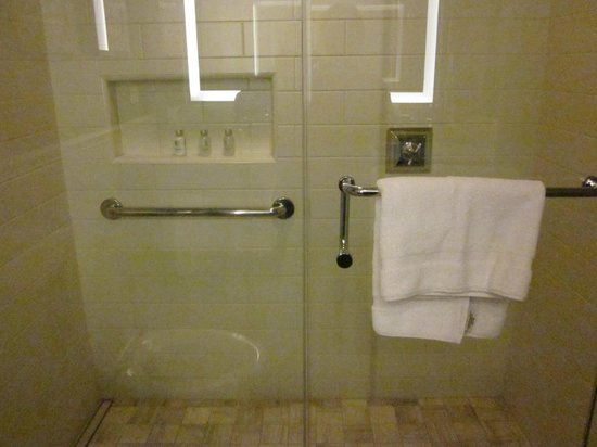 Loews Madison Hotel: Shower