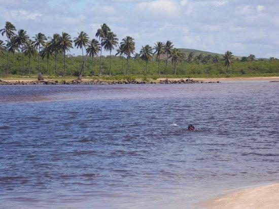 Praia De Maracaipe: Pontal de Maracaípe. Maravilhoso