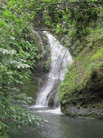 Pretty Wigmore's Waterfall