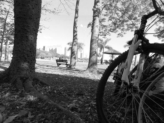 Villa Lobos Park: Áreas de descanso nos gramados