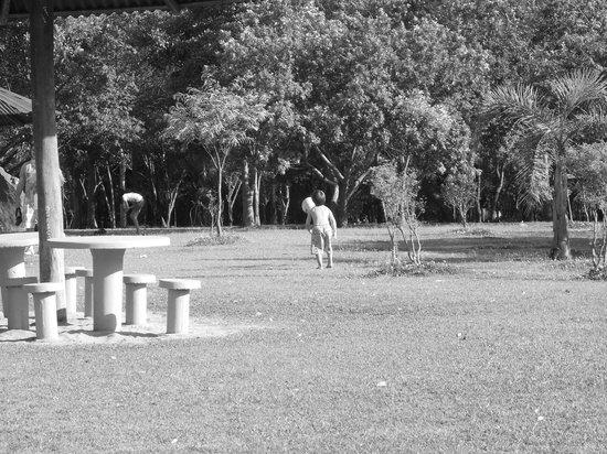 Villa Lobos Park: Crianças e Famílias nos gramados e áreas de Lazer