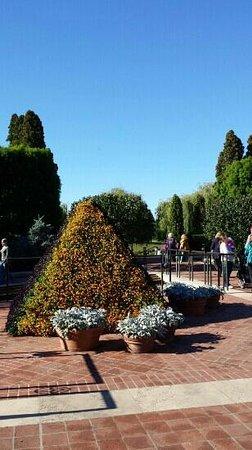 Chicago Botanic Garden: flower pyramid