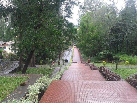 Nehru Garden - Koyna Dam