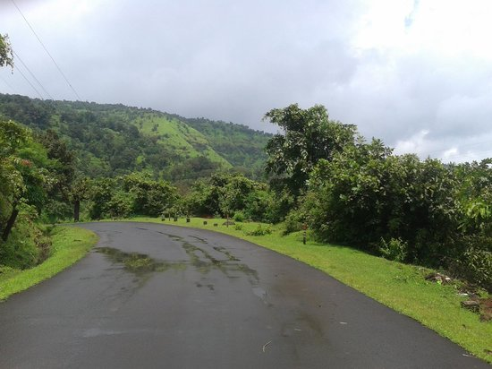 Koyna Dam: Road on the way to Humbarli Hill top, MTDC resort