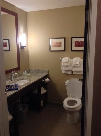Comfort Suites Minot: bathroom