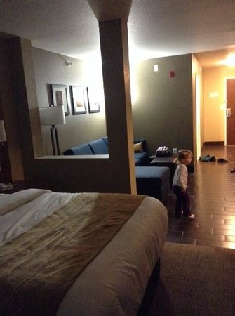 Comfort Suites Minot: sofacouch area
