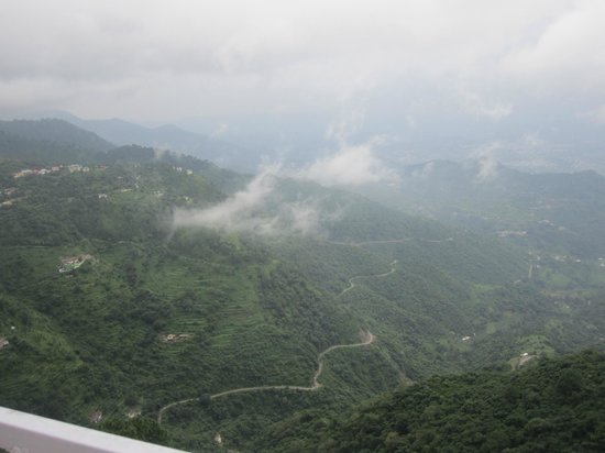 Birds View Kasauli: View from the room