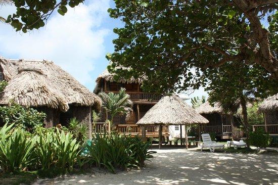Hotel del Rio: Outdoors