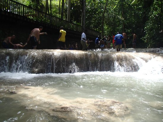 Dunn's River Falls and Park: 4