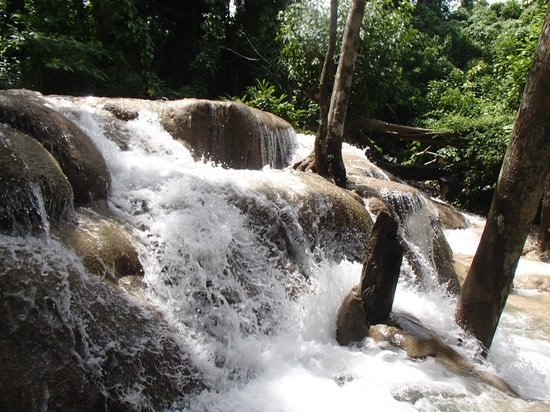Dunn's River Falls and Park: 5