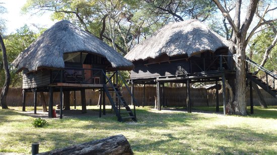 Sikumi Tree Lodge: Huts