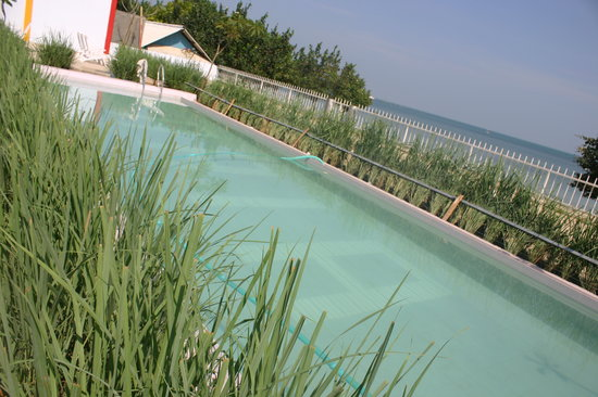 Swimming pool in JEPARA BEACH HOTEL