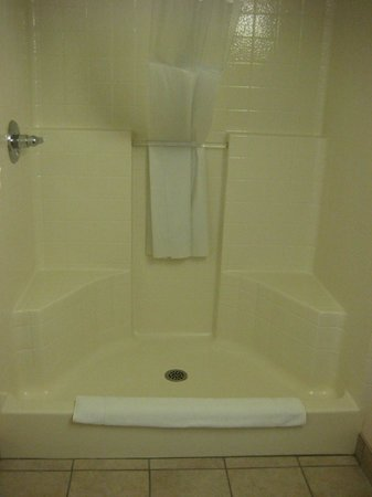 Shoreline Inn & Conference Center, an Ascend Hotel Collection Member: Shower--no tub in this king room