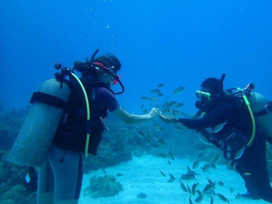 Jamaica Scuba Divers Ltd.: Marcia and Daughter