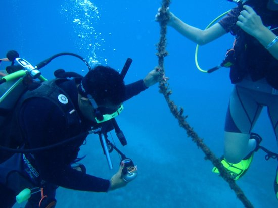 Jamaica Scuba Divers Ltd.: Learning the ropes from Marcia