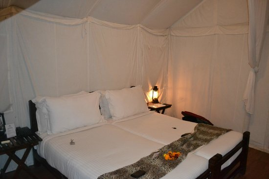 Abrar Palace Wildlife Resort: Tent