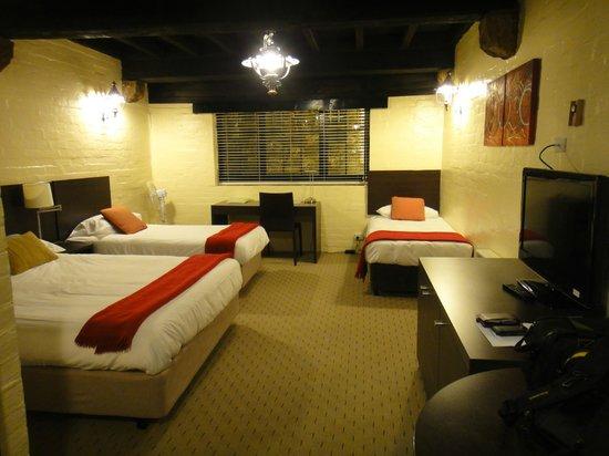 Leisure Inn Penny Royal Hotel & Apartments: Comfy room