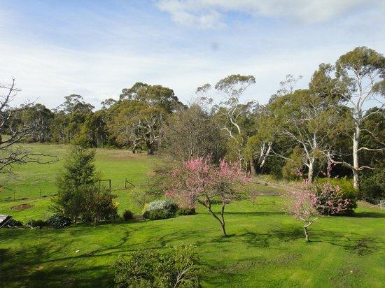 Redcliffe House: Farm Garden Outside