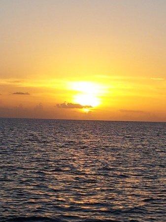 โคโคปาล์ม รีสอร์ท: Romantic sunset aboad the carnival catamaran