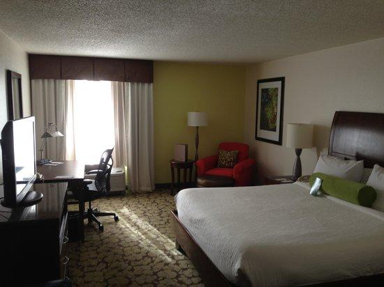 Hilton Garden Inn Orlando Airport : Standard room.