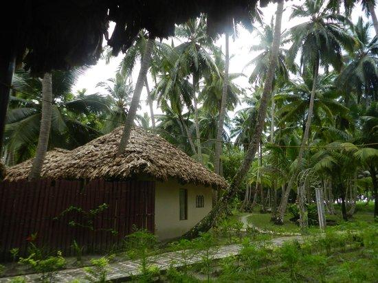 Munjoh Ocean Resort: Lovely Landscaping
