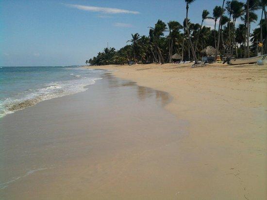 Sirenis Punta Cana Resort Casino & Aquagames: playa