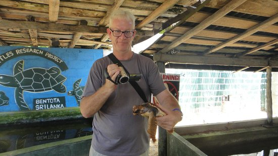 Sea Turtle Farm and Hatchery: holding a larger turle
