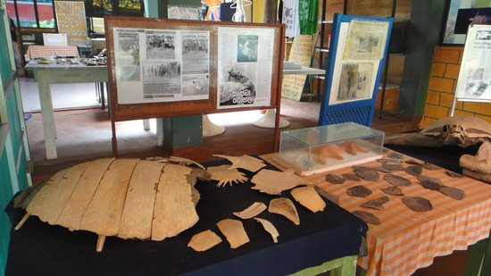 Sea Turtle Farm and Hatchery: Allow time to read about the project & farm