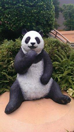 โอเชียนปาร์ค: Pandas everywhere