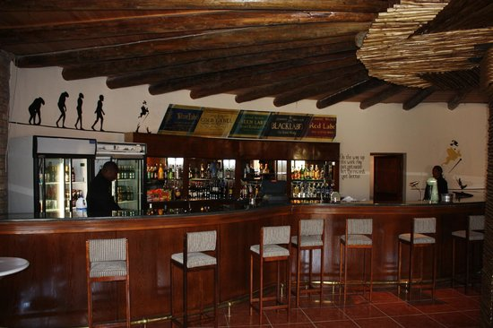 Lookout Lodge: Bar