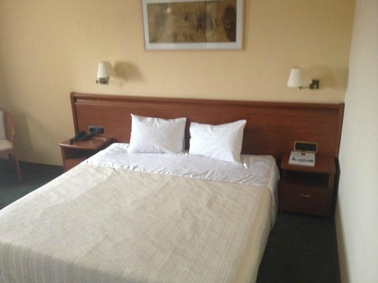 Savoy Hotel: Room 2