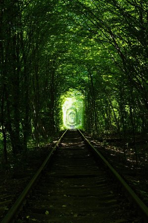 Tunnel of Love: The tunnel
