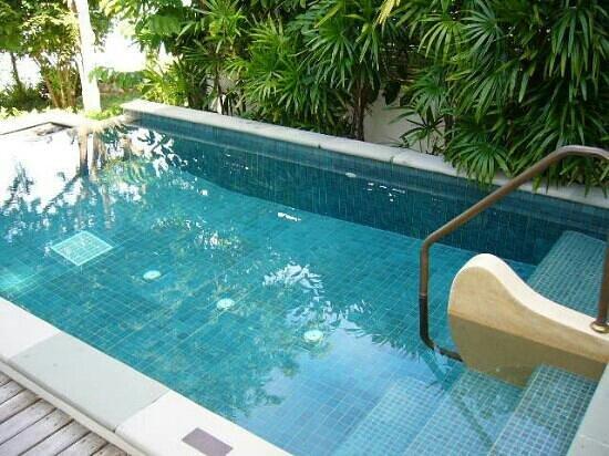 โรงแรมปารดี: pvt plunge pool